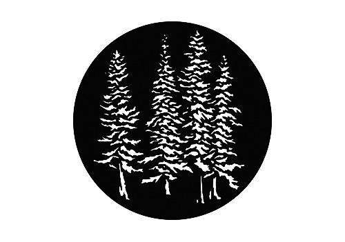 B/W - Trees & Flowers